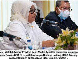 Wagub Kepri pada Pansus DPR-RI : Masukan dari Kepri Diakomodir