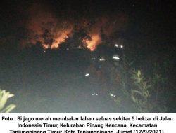 5 HektarLahan Terbakar, DPKP Kerahkan 3 Armada Damkar