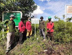 Patroli Rutin Karhutla KPHP Unit XIV Tanjung Jabung Timur Telusuri Hutan Lindung Gambut Sungai Londrang